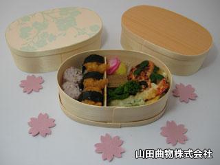 春の行楽のお供に、曲げわっぱのお弁当箱。(使い捨てOKのワンウェイ容器)